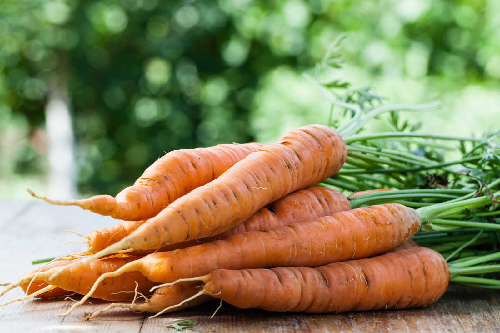 Carrots | 4 Organic Juicing Recipes You Can Easily Make At Home