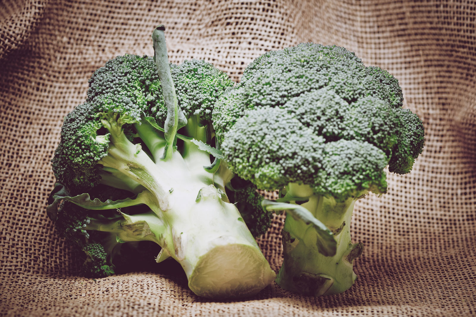 Broccoli | The Best Fruits and Vegetables for Juicing With 3 Ingredients